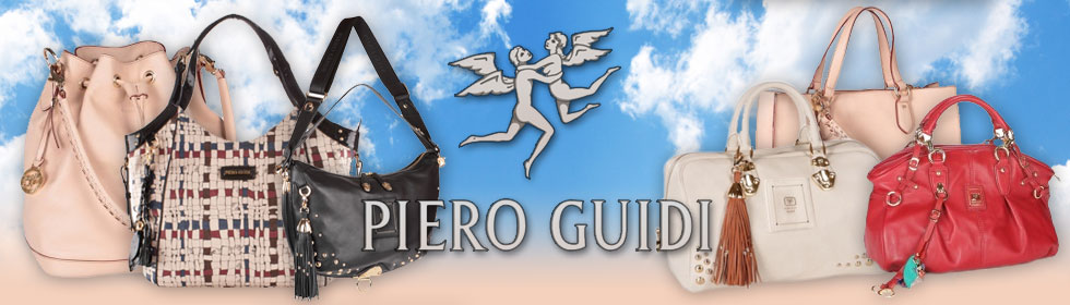 Piero Guidi Web banner